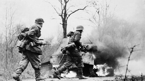 US soldiers abandoned thousands of cars they had plundered from Nazi to rot in a forest in Belgium