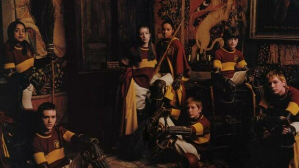 Gryffindor Wins The Quidditch Cup