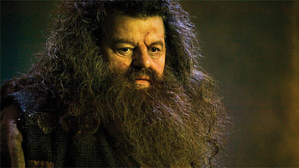 Rubeus Hagrid Robbie Coltrane